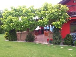 ogród-zakładanie