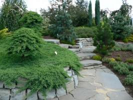pielegnacja-ogrody-bielsko