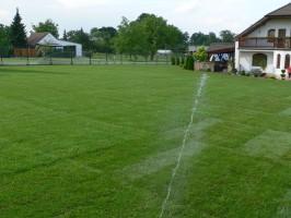 trawniki-pielegnacja holisz